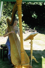 Heloise Davies wedding harpist